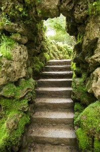 stone stairs at nature